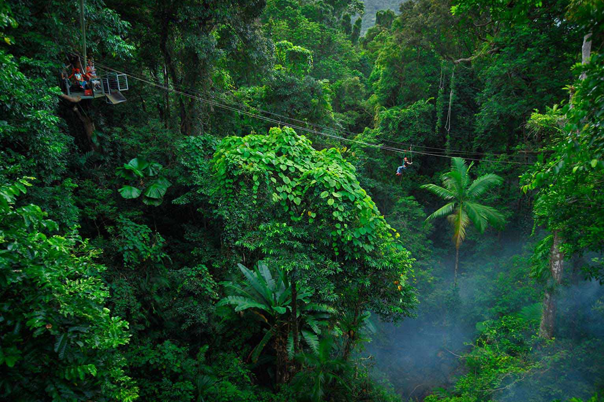 13-Jungle-Surfing-Tour